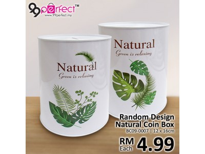 Random Design Natural Saving Coin Box