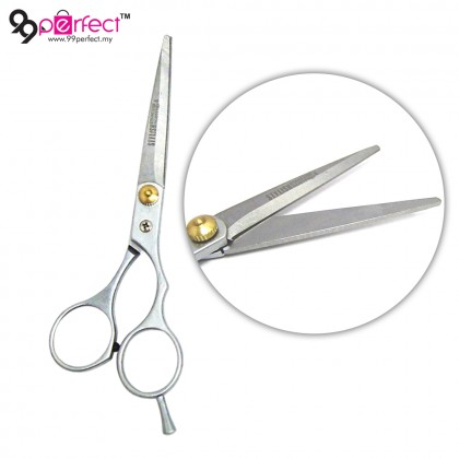 2 in 1 Professional Salon Hair Cutting Thinning Stainless Steel Scissors Tool (M24-126) [ 99PERFECT ]
